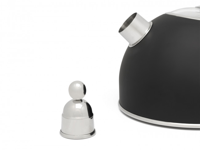 Water kettle 2.5L matt black